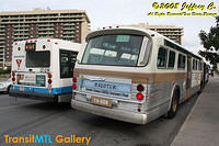Restored Buses of Montreal